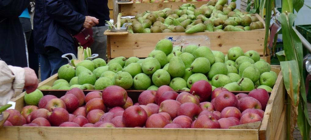 Apfelfest 2017 – jetzt bewerben